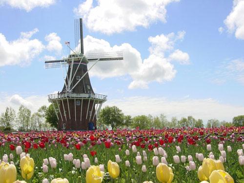 DEzwann-Holland_500px