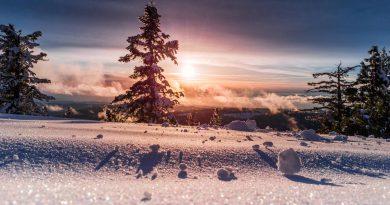 Mackmyras värmande vintersol